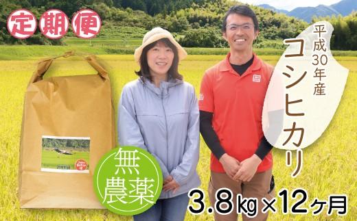 K-5【定期便】高本さんちのコウノトリ育む農法(農薬不使用)のお米 3.8kg(1月から年12回)