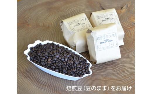 No.002 焙煎香房シマノ 至高のスペシャルティコーヒー(豆) / 珈琲 オリジナル 専門店 大阪府 特産品