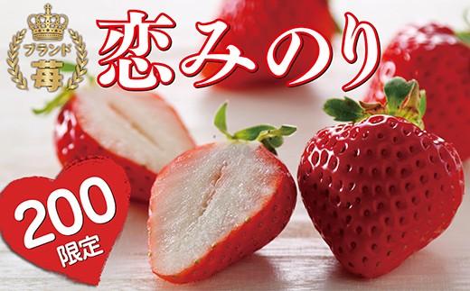 D16-03 新品種を限定お披露目!自然農法アルギット農業「恋みのり(苺)」280g×2パック詰め