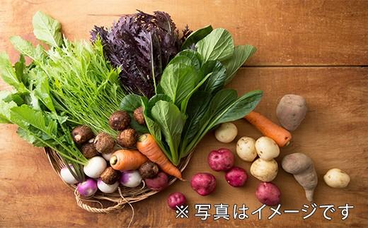 7月、9月、11月、1月の年4回、旬の野菜を詰め合わせにしてお届けします!