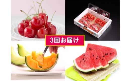 FY18-852【先行予約】夏のフルーツ三昧セット(3回)