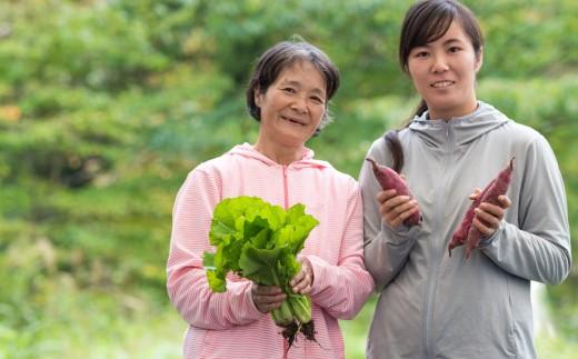 【定期便】オーガニック野菜 3ヶ月