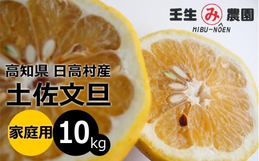 [№5725-0155]高知県産 土佐文旦 家庭用 10kg