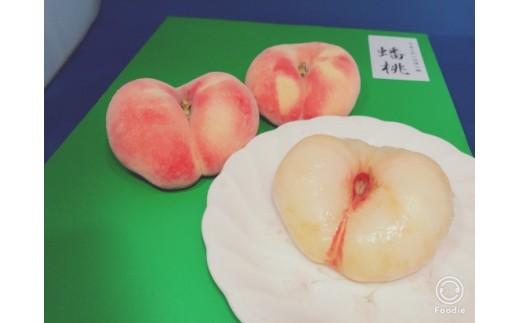 FY18-819【先行予約】♪不老不死の山形桃♪ばんとう 約1.5kg