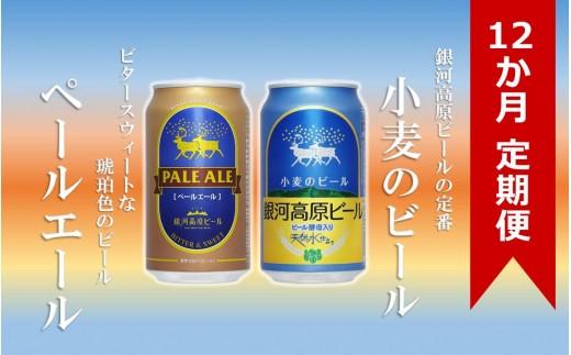 銀河高原ビール 二種のビールセット定期便(12か月+1か月分)