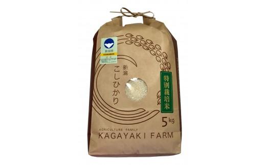 A-03 カガヤキ農園 特別栽培コシヒカリ5㎏