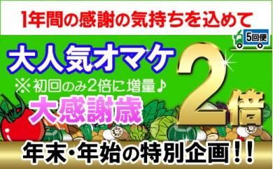[№5803-0372]年末・年始特別企画!野菜とフルーツの詰め合わせ【定期便5回】(初回配送分のみオマケが2倍)