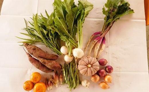 ガバレ農場の季節の有機野菜詰め合わせセット2