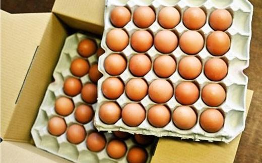 松村養鶏場◆最高級特選たまご「クイーンラン」50個セット2