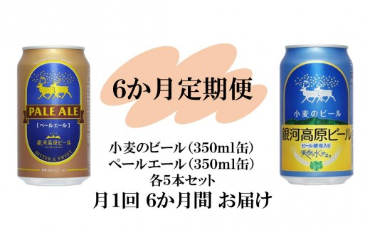 銀河高原ビール 二種のビールセット6か月定期便