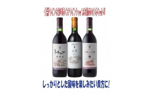 B001-3 ワインショップおすすめ赤ワインセット