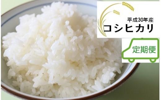 【3回定期便】JA直売所直送!コシヒカリ 30年産 3㎏を3袋/毎月お届け