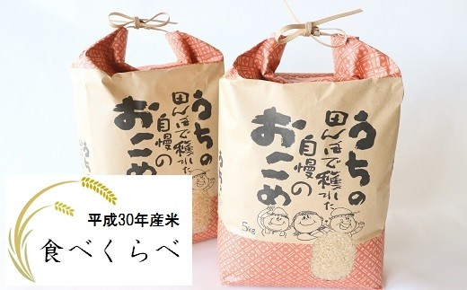 【新米】JA直売所直送!コシヒカリ・ひとめぼれ食べくらべセット 30年産(精米) 各5㎏