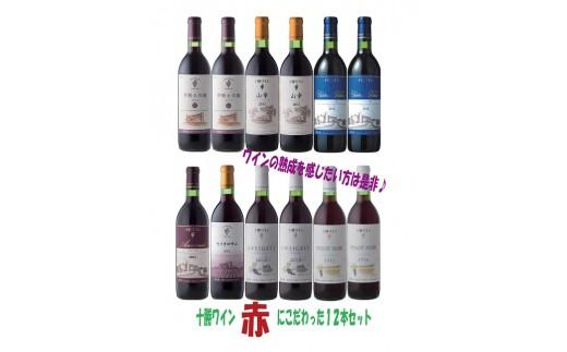 D001-1 「十勝ワイン」 赤にこだわったビンテージ12本セット