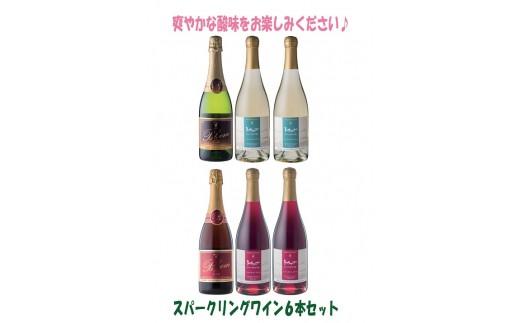 C002-1 「十勝ワイン」 スパークリング6本セット