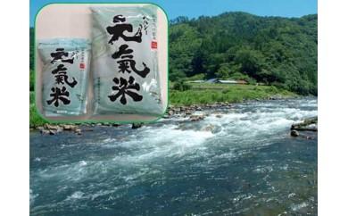 高津川の恵み 特別栽培米ヘルシー元氣米【平成30年産】