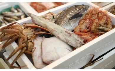 [№5685-1143超新鮮!日本海の鮮魚詰合せ(大)下処理済