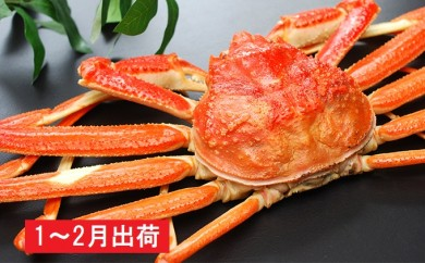 [№5685-1148]1~2月 日本海の天然ズワイガニ 1万5千円コース