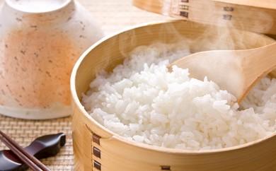 [№5810-0251]農家のつくったおいしいお米 コシヒカリ 5kg