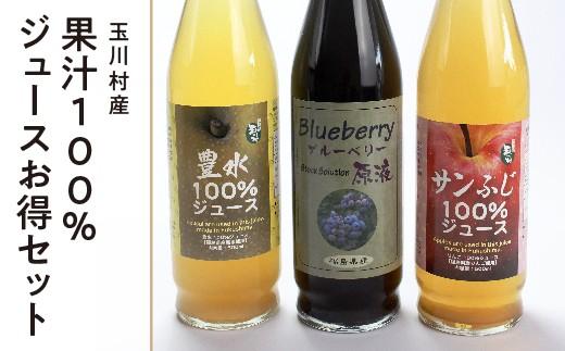 FT18-020 【道の駅たまかわ】玉川村産果汁100%ジュースお得セット