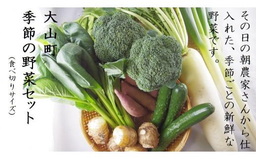 91.大山町産季節の野菜Aセット(小)