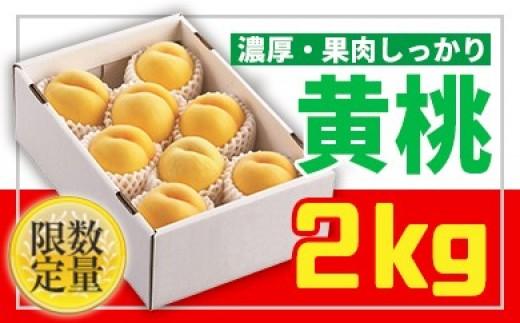 FY18-817【先行予約】♪山形黄金色の桃♪黄桃秀品2kg