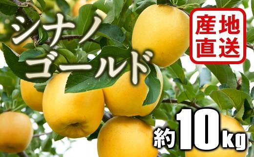B783 【産地直送】シナノゴールド 約10kg