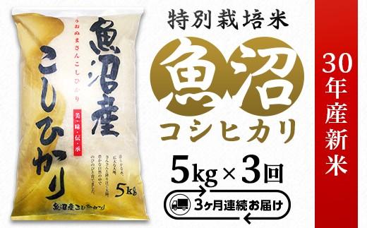 3-059【3ヶ月連続お届け】魚沼産コシヒカリ特別栽培米5kg【H30年産】(長岡川口地域)