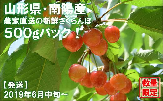 609 【先行予約】佐藤錦 500g(秀・2L以上)生産者:高橋 英治