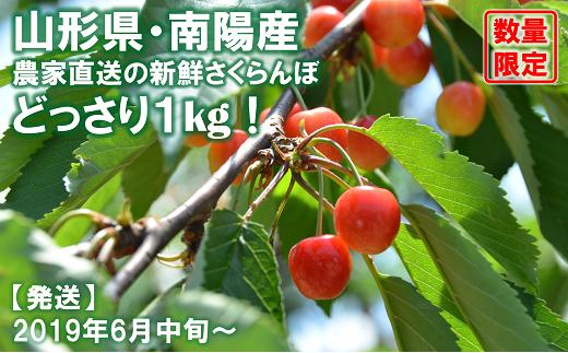 608 【先行予約】佐藤錦 1kg(秀・L以上)生産者:高橋 英治