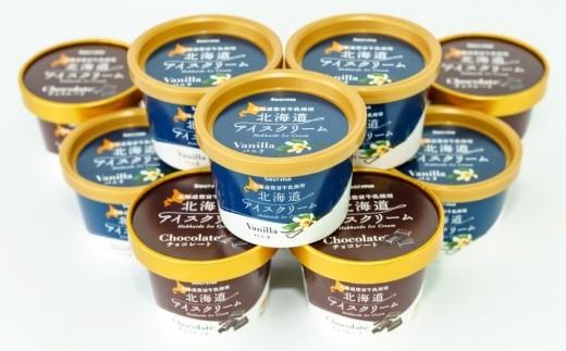 S-01 北海道アイスクリーム  【110ml 2種類 計12個】