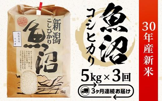 3-058【3ヶ月連続お届け】魚沼産コシヒカリ5kg【H30年産】(長岡川口地域)