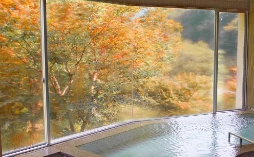 美しい紅葉を見ながら「日本三大美人の湯」に浸かる
