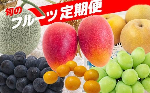 【定期便:全7回】こばやし季節のフルーツコース 31-SKM17
