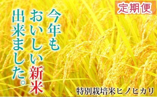 【定期便】【30年産新米!】山麓の特別栽培米ヒノヒカリ(48㎏) 30-0026