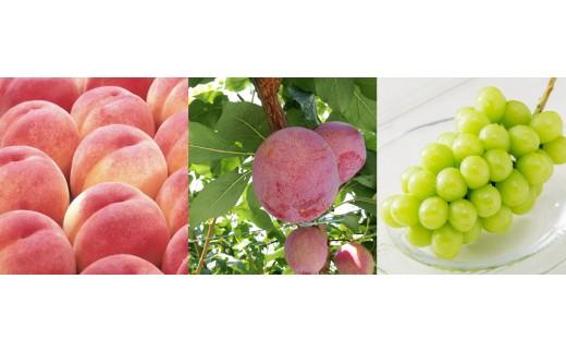 4-1-6 南アルプス天空舎が贈る「南アルプス夏の果実3品」(2019年度発送分)