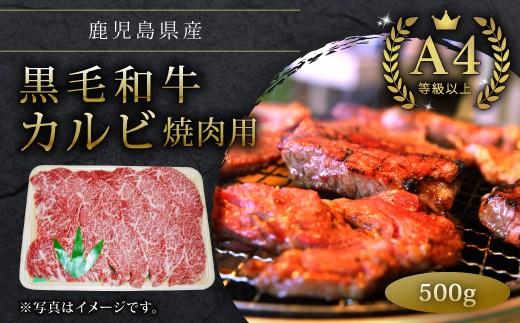 【12439】鹿児島県産A4等級以上黒毛和牛カルビ焼肉用500g 牛肉