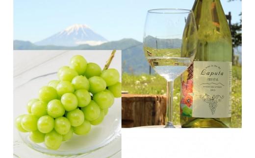 2.5-4-1 南アルプス産「シャインマスカットと引き立てるワイン」