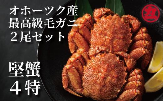 10-172 オホーツク産【四特】毛ガニ×2尾セット(350g前後)