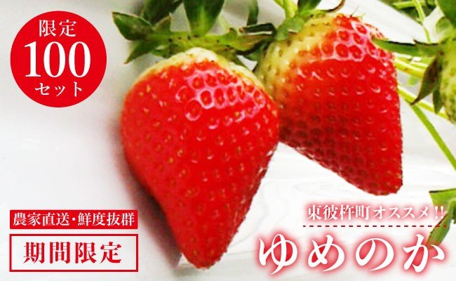 BBL001 【期間限定!】長崎県産「ゆめのか」いちご-1