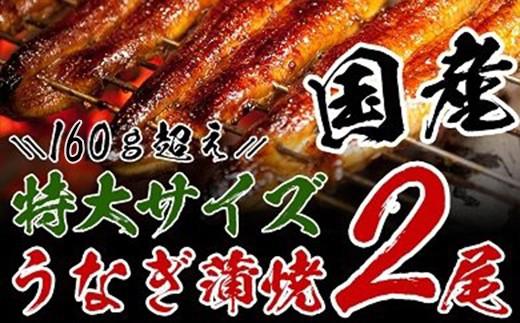 A363 【大満足】うなぎ蒲焼(長焼2尾入)