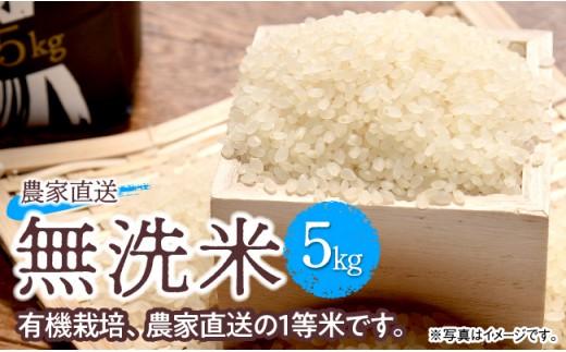 i5904農家直送!無洗米こしひかり