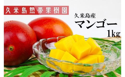 【2019年発送】久米島熱帯果樹園 マンゴー1kg【2~3玉】