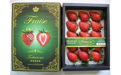 AG702-CみなみかたFRAISE倶楽部 「完熟いちご とちおとめ」 化粧箱入り 15粒