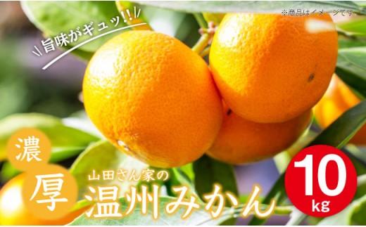 BBM001  【濃厚な味にビックリ!?】山田さん家の濃厚!温州みかん 10kg【100セット限定!】