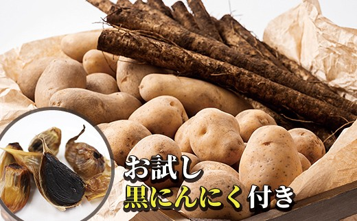 [V033]西原さんの越冬じゃがいも・ごぼうセット ◆2019年2月発送開始予定
