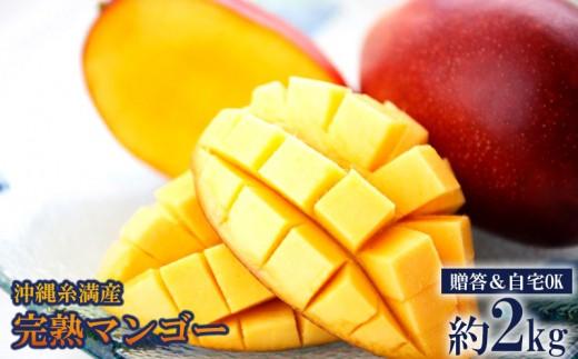 【2019年発送】◆贈答&自宅OK◆沖縄糸満産完熟マンゴー約2kg
