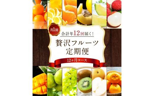 【先行予約】贅沢フルーツ定期便<翌1月~12月 全12回>【F26】