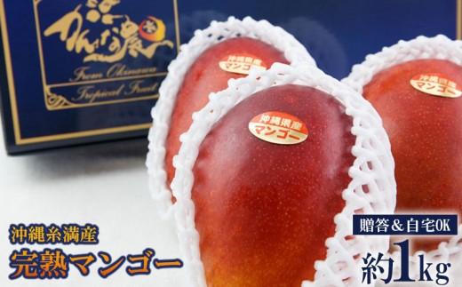 【2019年発送】◆贈答&自宅OK◆沖縄糸満産完熟マンゴー約1kg