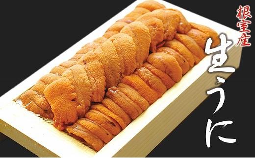 CA-44024 【北海道根室産】エゾバフンウニ(オレンジ~茶色の色味)130g前後×1折